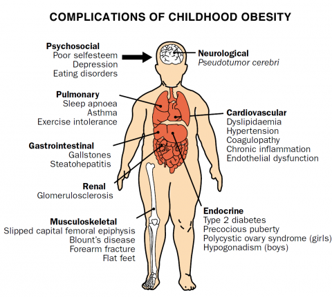 Final Report Of The Commission On Ending Childhood Obesity Hccdoc Gov Lb